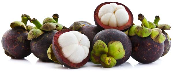 mangosten-plod
